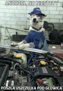 andrzej-mechanik