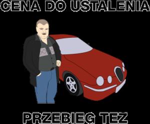 mem sprzedawca samochodów