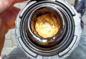 Masło pod korkiem oleju